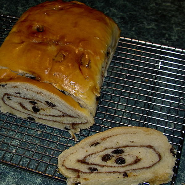Connective Tissue & Raisin Bread